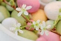 Decorate | Easter  / by Ashley @ Design Eur Life