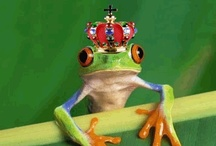 "PrinceChaRmINg? ""Ribbit""       /   Well, how many kisses does it take??     / by Karie Lighthart"