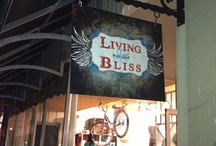 Living on the Bliss-Our Store / by Cindy Miller