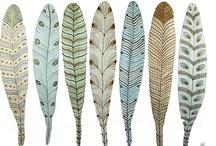 Feathers illustrations / by Sara Piersanti