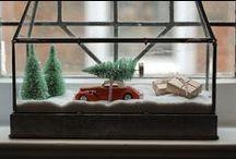 Christmas / by Tara Kenney