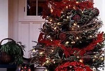 Christmas / by Josephine Peters