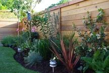 gardening ideas / by Iris Carlisle