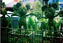 Disney, Disney / by Danielle Smith ExtraordinaryMommy.com