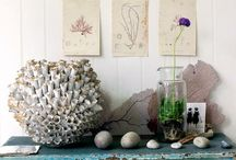 Display and Details / by Leah French