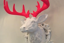 Antlers / Funky ways to display traditional antlers and animals.  / by Kandrac & Kole Interior Designs