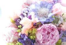 Flowers / by Sabrina Maclean