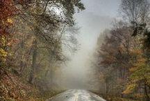VIRGINIA ~ The Beautiful / by Ana De Groat