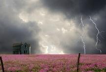 Nature - Amazing Skies Above Us  / by Cheryl Johnson
