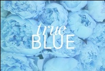True Blue  / by BaubleBar