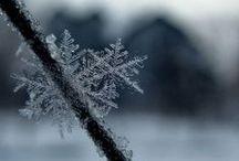 In Winter / by Lucile Jensen