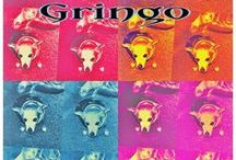 GRINGO! / With my dog Gringo in mind! / by Kate Chandler