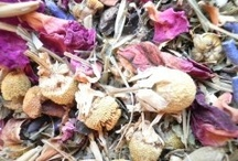 Herbal Healing~ The Olde Ways / herbal medicine is the oldest form of medicine known to humans. Before humans even had a written language they were already well versed in the medicinal use of plants. People have been using thousands of medicinal plants on every continent for thousands of years / by Patty Najafabadi