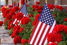 4th of July/Memorial Day / by Linda Abraham
