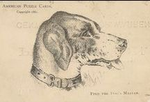 Vintage DOGS on paper / Dogs  on postcards , magazines, books, greeting cards, etc.... / by Denise Thompson