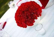 Wedding Plans! / by Cori Anderson