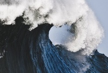 Wave / by Haddarah