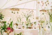 wedding / by Brittany Barnard
