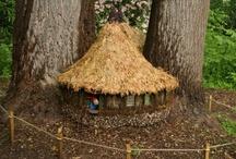 Outdoor/Gardening / by Patsy Tyrrell-Johnson