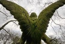 Angels Unaware / by Janis Gatlin