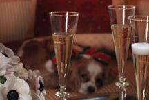Cocktails in Veranda / Cheers! / by Veranda Magazine