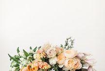 f l o r a l & m i n e r a l / flowers & gems / by Beth Kirby | {local milk}
