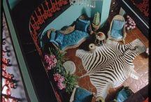 Print: Zebra / by Veranda Magazine