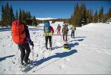 STP: Winter Camping / We love being outside ... in all seasons! Here's a collection of blog posts, videos and product that can help you get outside ... even in the coldest of months! / by Sierra Trading Post