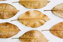 CELEBRATE:Thanksgiving / by Lucy (Craftberry Bush)