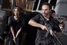 The Walking Dead / The Walking Dead television series. / by The Walking Dead Fourms