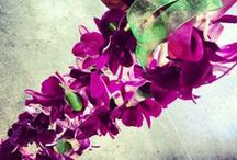 In House Lei Designs / We handcraft bespoke leis and flower garlands, whatever your occasion we have a lei or garland for you!! We use fresh or silk flowers. (Please give us as much notice as possible before your lei or garland is needed.) / by Flora Unique Florist