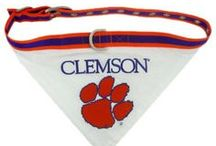 NCAA Dog & Cat Products / by Radio Fence
