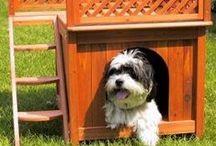Dog & Cat Houses / Find the perfect home for your dog or cat with our wide selection of dog houses and cat houses. Give your pet that home away from home with our travel tents for an easy travel experience. #dogs #cats #doghouse #cathouse #wooden #wood #heatedcathouse #heated #camping #travel / by Radio Fence