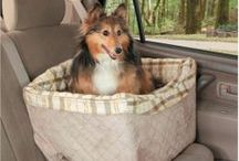Dog and Cat Car Seats / by Radio Fence