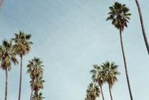 CALI  / Inspired by our life - west coast living.   / by Fidelity Denim