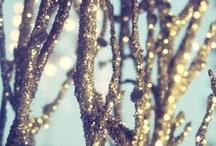 holiday  / by Hannah Hamilton