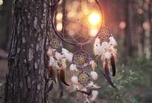 Dream Catchers.  / by Katie Woodling