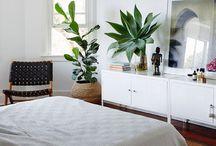 Furniture & Baskets / by Sara Christensen