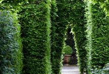 Outdoor Spaces - Gardens / by Christina Mott
