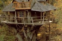 Tree Houses, Tiny Houses / by Becky O'Day