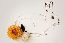 ♥ Bunnies / by April Tse