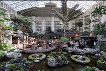 Gaylord Opryland Resort & Convention Center / Photos and information about the primary location of the NSBE40 Convention. / by NSBE