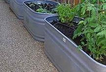 Garden Ideas / by Karen Gruver