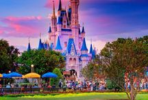 Ideas for Disney / Ideas for our Disney trip next summer / by Toni Gregory