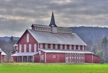 Barn Love / by Ann (Vintage River Ranch)