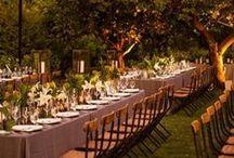 Wedding: Outdoor Decor  / by Erin Watlington