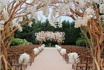 Wedding: Ceremony  / by Erin Watlington
