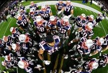 New England Patriots / by Carol Hollway