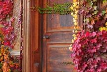 Knock-Knock / by Kimberly Ridgway