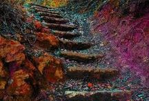 Stairs / by Holly Mitchell